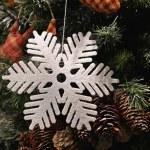 Snowflake — Stock Photo #36345967
