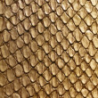 Gold snake texture — Stock Photo