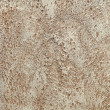 Limestone texture — Stock Photo #37019013