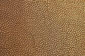 Texture de cuir — Photo