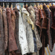 Fur coats — Stock Photo #49644549
