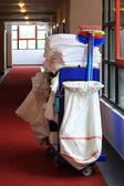 úklidové vozíky — Stock fotografie
