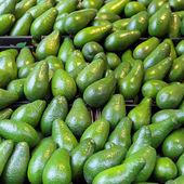 Avokado — Stok fotoğraf