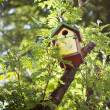 Nesting-box - Stock Photo