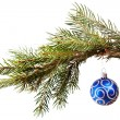 Blue christmas decoration on the fir tree — Stock Photo #17357587