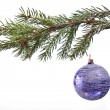 Blue christmas decoration on the fir tree — Stock Photo