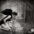 Stock Photo: Fallen angel