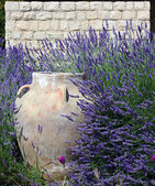 Jar against Stonewall amidst Lavender — Stock Photo