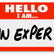 Foto de Stock  : Hello I Am Expert Nametag Expertise Tag