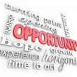 Opportunity Words Experience Chance for New Opening — Stock Photo