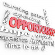 Opportunity Words Experience Chance for New Opening — Stock Photo #13559015