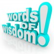 Words of Wisdom 3d Words Advice Information - Foto de Stock