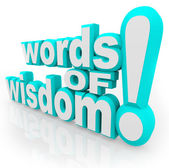 Words of Wisdom 3d Words Advice Information — Stock Photo