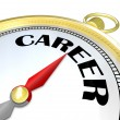 Career Gold Compass Directions Point to Success in Job - Stock Photo