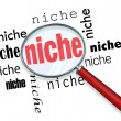 Finding a Targeted Niche - Magnifying Glass -  
