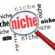 Finding a Targeted Niche - Magnifying Glass - Foto Stock