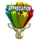 Uppskattning award - erkänner enastående ansträngning eller lojalitet — Stockfoto