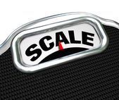 Scale Word on Measurement Tool Device Measuring Weight — Stock Photo