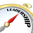 Leadership - Gold Compass Symbol of Leader Taking Charge - 