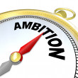 Ambition - Gold Compass Directions to Enterprising - Stock Photo