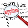 Finding Happiness - Magnifying Glass - Stock Photo