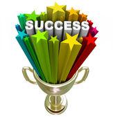 Trofeo éxito - un logro ganar — Foto de Stock