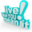 Live Like You Mean It 3D Words Saying — 图库照片