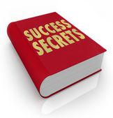 Geheimen van het succes boeken instructies voor handmatige advies — Stockfoto