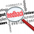 Stock Photo: Feedback Magnifying Glass Input Comments Ratings Reviews