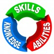 Skills Knowledge Ability Criteria Job Candidate Interview - Foto Stock