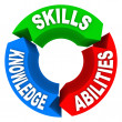 Skills Knowledge Ability Criteria Job Candidate Interview — Foto de Stock
