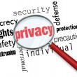 Privacy Word Magnifying Glass Online Security Identity Theft - Foto Stock