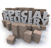 Special Delivery Boxes Packages Shipping Handling Warehouse — Stock Photo