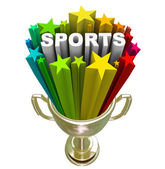 Sports Word Gold Trophy Winner Champion — Stock Photo