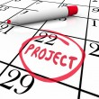Project Start or Finish Date Circled on Calendar Day — Stock Photo #26152811