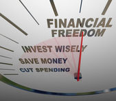 Financial Freedom Speedometer Invesment Savings Money — Stock Photo