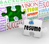 Resume Fill Opening New Position Job Interview Experience — Stock Photo
