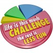 Stock Photo: Pie Chart Life This Much Challenge Rest Less Fun