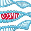 Obesity Word DNA Strand Medical Research Fat Hereditary — Stock Photo #26722439