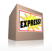 Express Fast Special Delivery Rush Shipment Cardboard Box — Stock Photo