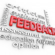 Stock Photo: Feedback 3D Word Collage Evaluation Comment Review