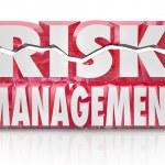 Risk Management 3d Words Reducing Danger Minimize Liability — Stock Photo