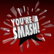 You're a Smash Hit Popular Big Success Feedback Praise — Stok fotoğraf