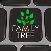 Family Tree Computer Laptop Keyboard Key Button Research History — Stock Photo