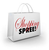 Shopping Spree Bag Marketplace Store Spending Money — Stok fotoğraf