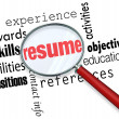 Stock Photo: Resume Magnifying Glass Apply Job Experience Document