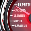 Expert Speedometer Measuring Skill Level from Novice to Skilled — Zdjęcie stockowe