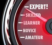 測定技能レベルの初心者から熟練した専門家のスピード メーター — ストック写真