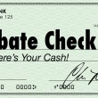 Rebate Check Words Check Money Back Offer Cash Refund — Stock Photo #31284433