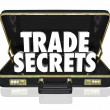 Trade Secrets Briefcase Business Proprietary Information Intelle — Stock Photo